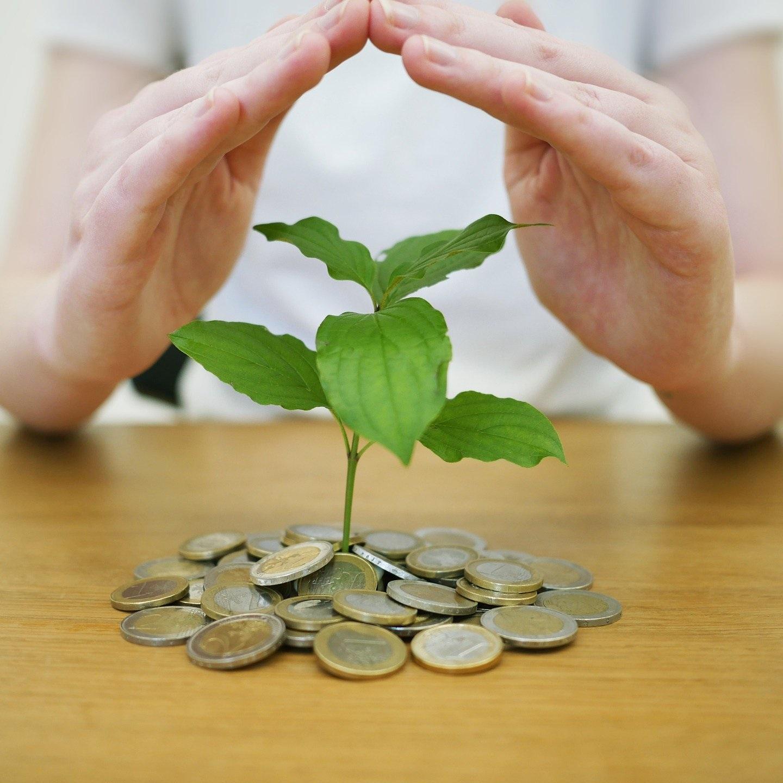 Illustration représentant un arbre prenant racines dans un sol de pièces de monnaie