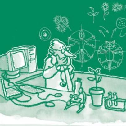 Illustration représentant un scientifique derrière son bureau sur lequel est posé un ordinateur, un microscope une plante, et derrière un tableau sur lequel sont dessinés des schémas à la craie blanche