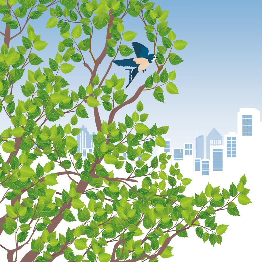 Illustration d'un oiseau sur un arbre, avec les contours d'une ville en fond