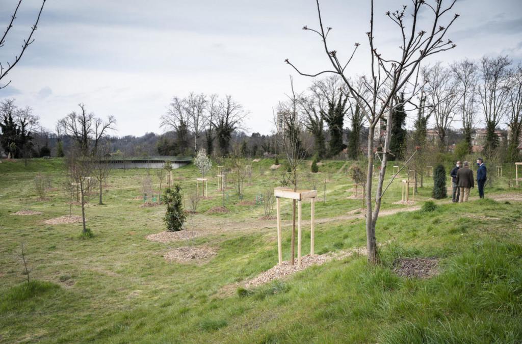 La multiplication des plantations d'arbres participent à la lutte contre la chaleur en ville