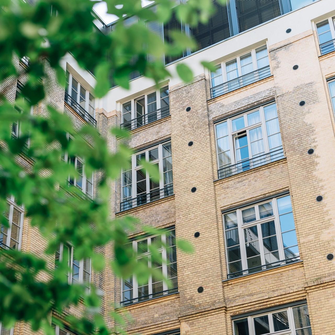 Photographie d'un immeuble avec en premier plan les feuilles d'un arbre