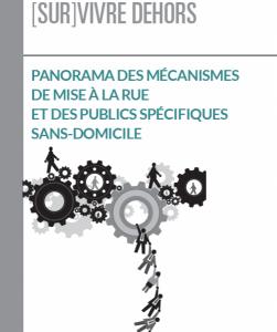 Couverture du document Panorama des mécanismes de mise à la rue et des publics spécifiques sans-domicile